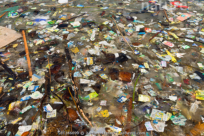 Coastal pollution, Philippines, May 2006  ,  COASTS,coral triangle,ENVIRONMENTAL,INDO-PACIFIC,MARINE,plastic,POLLUTION,REFUSE,rubbish,SOUTH-EAST-ASIA,WWF,PHILIPPINES,,Waste,Environment,Environmental Issues,Environmental Damage,Littering,Marine Pollution,  ,  Jurgen Freund