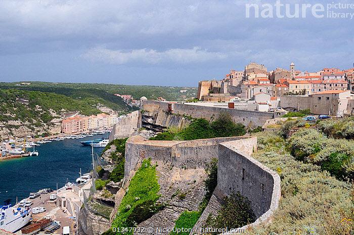 Bonifacio citadel and natural harbour protected by limestone cliffs. Southern tip of Corsica, France, May 2010.  ,  BAYS,BOATS,BUILDINGS,CITYSCAPES,CORSICA,EUROPE,FRANCE,HARBOURS,LANDSCAPES,MEDITERRANEAN,SEASCAPES,TOURISM,TOWNS,VEHICLES,WALLS  ,  Nick Upton