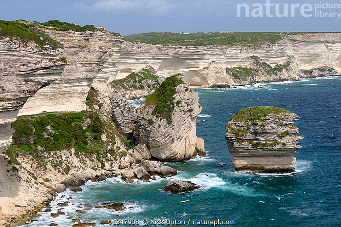 """White limestone cliffs with sections that have collapsed into the sea. """"Le Grain de Sable"""" (grain of sand) sea stack is to the right. Bonifacio, southern tip of Corsica, France, May 2010., CLIFFS,COASTS,CORSICA,EROSION,EUROPE,FRANCE,GEOLOGY,LANDSCAPES,MEDITERRANEAN,ROCKS,SEAS,SEASCAPES,STORMS,WATER,WEATHER, Nick Upton"""