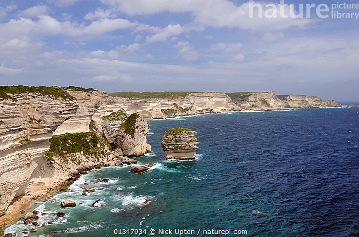 """White limestone cliffs with sections that have collapsed into the sea. """"Le Grain de Sable"""" (grain of sand) sea stack is central. Bonifacio, southern tip of Corsica, France, May 2010., CLIFFS,COASTS,CORSICA,EROSION,EUROPE,FRANCE,GEOLOGY,LANDSCAPES,MEDITERRANEAN,ROCKS,SEAS,SEASCAPES,STORMS,WATER,WEATHER, Nick Upton"""