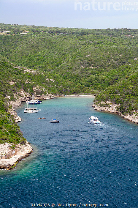 Boats moored in sheltered natural harbour. Bonifacio, off the entrance channel to the main harbour, southern tip of Corsica, France, May 2010., BAYS,BOATS,CORSICA,EUROPE,FRANCE,HARBOURS,LANDSCAPES,MEDITERRANEAN,SEASCAPES,TOURISM,VERTICAL,WATER,YACHTS, Nick Upton