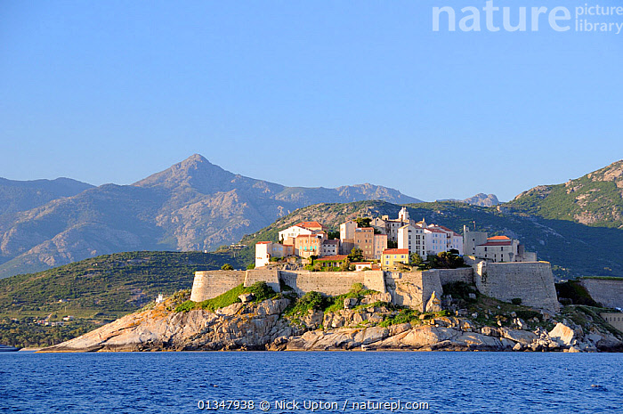 Medieval walled citadel of Calvi viewed from the sea at dawn with mountainous backdrop. Corsica, France, May 2010., COASTS,CORSICA,EUROPE,FRANCE,LANDSCAPES,MEDITERRANEAN,MOUNTAINS,SEAS,SEASCAPES,TOWNS, Nick Upton