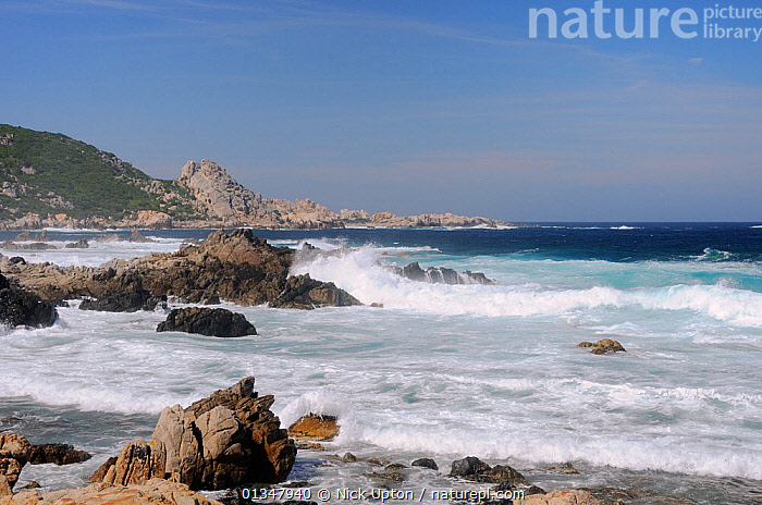 Waves breaking on rocky granitic coastline on a rough, windy day. Campomoro Point, near Propriano, Corsica, France, June 2010., BEACHES,COASTS,CORSICA,EUROPE,FRANCE,LANDSCAPES,MEDITERRANEAN,SEAS,SEASCAPES, Nick Upton