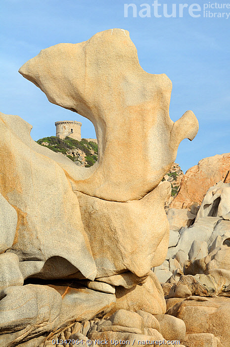 16th Century Genoese watchtower, the largest on Corsica, framed by granite rock sculpted by weather and sea. Campomoro Point in evening light, Corsica, France, May 2010.  ,  ARTY SHOTS,BUILDINGS,CORSICA,EUROPE,FRANCE,GEOLOGY,HISTORIC,LANDSCAPES,MEDITERRANEAN,ROCK FORMATIONS,ROCKS,VERTICAL  ,  Nick Upton