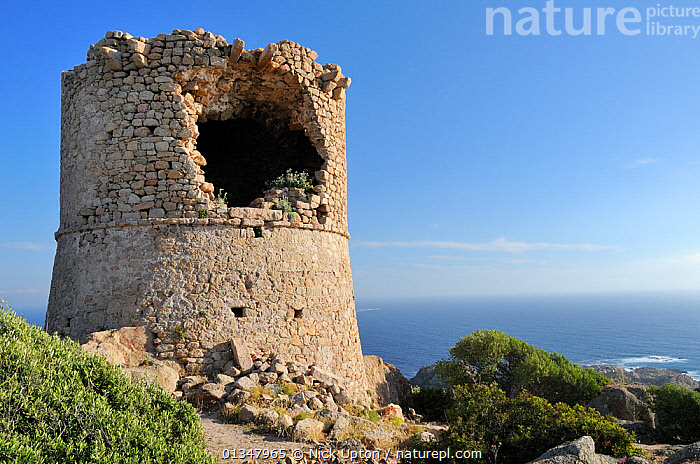 Ruined 17th Century Genoese watchtower perched on a granite outcrop. Cape Roccapina, overlooking the sea, southern Corsica, France, May 2010., BUILDINGS,CORSICA,EUROPE,FRANCE,HISTORIC,LANDSCAPES,MEDITERRANEAN,RUINS,SEAS, Nick Upton