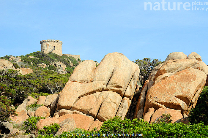 16th Century Genoese watchtower, the largest on Corsica, perched on a rocky headland, surrounded by huge weathered granite boulders and coastal maquis scrub. Campomoro Point, Corsica, France, May 2010., BUILDINGS,CORSICA,EUROPE,FRANCE,HISTORIC,LANDSCAPES,MAQUIS,MEDITERRANEAN,ROCKS, Nick Upton