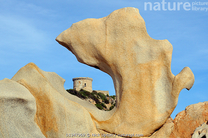 16th Century Genoese watchtower, the largest on Corsica, framed by granite rock sculpted by weather and sea. Campomoro Point in evening light, Corsica, France, May 2010.  ,  ARTY SHOTS,BUILDINGS,CORSICA,EUROPE,HISTORIC,LANDSCAPES,MEDITERRANEAN,ROCK FORMATIONS,ROCKS,RUINS  ,  Nick Upton