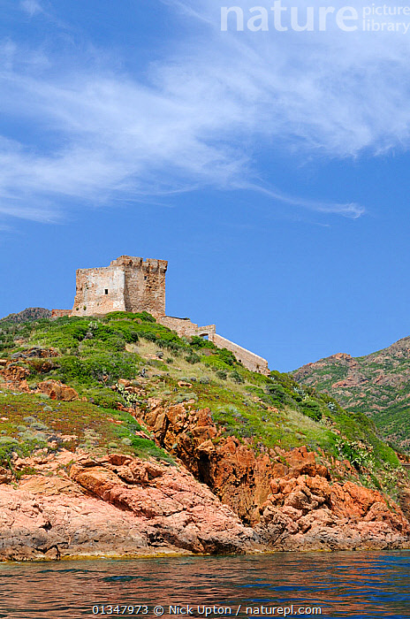 17th century Genoese watch tower perched on volcanic rock (rhyolite porphyry) headland, within a UNESCO World Heritage site and Corsica's National Park (Parc Naturel Regional de Corse). Corsica, France, May 2010., BUILDINGS,COASTS,CORSICA,EUROPE,FRANCE,HISTORIC,LANDSCAPES,MEDITERRANEAN,RESERVE,RUINS,SKIES,VERTICAL, Nick Upton