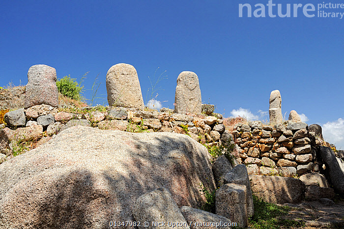 Row of five Bronze age (c 3,500 year old) statue menhir standing stones at Filitosa with carved faces. Corsica, France, June 2010., ANCIENT,ARCHAEOLOGY,ARTIFACTS,CARVING,CORSICA,EUROPE,FRANCE,HISTORIC,LANDSCAPES,MEDITERRANEAN,ROCKS,STONES, Nick Upton