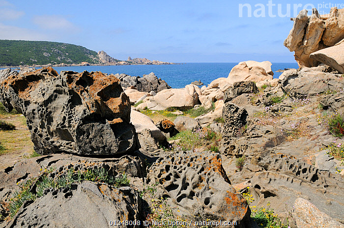 Weathered volcanic lava rocks and granite boulders on the coast at Campomoro Point. Near Propriano, Corsica, France, June 2010., COASTS,CORSICA,EROSION,EUROPE,FRANCE,GEOLOGY,LANDSCAPES,MEDITERRANEAN,ROCKS, Nick Upton