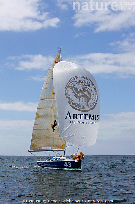 """""""Artemis"""" under spinnaker ahead of La Solitaire du Figaro, France, July 2011. All non-editorial uses must be cleared individually., ADVERTISING,BOATS,CLIMBING,CREWS,EUROPE,FORESAILS,MAINSAILS,MAN,MASTS,NAMES,PEOPLE,PROCEDURES,RACES,SAILING BOATS,SKIPPER,SOLO,SPINNAKERS,TEXT,VERTICAL,YACHTS,SPORTS ,BOAT-PARTS,SAILS, Benoit Stichelbaut"""