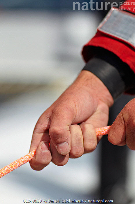 """Hands clasping rope on board MOD70 trimaran """"Veolia Environnement"""", Concarneau, Brittany, France, June 2011. All non-editorial uses must be cleared individually.  ,  BOATS,CLOSE UPS,CREWS,DETAILS,EUROPE,HANDS,LINES,PEOPLE,PROCEDURES,ROPES,SAILING BOATS,SHEETS,VERTICAL,BOAT-PARTS  ,  Benoit Stichelbaut"""