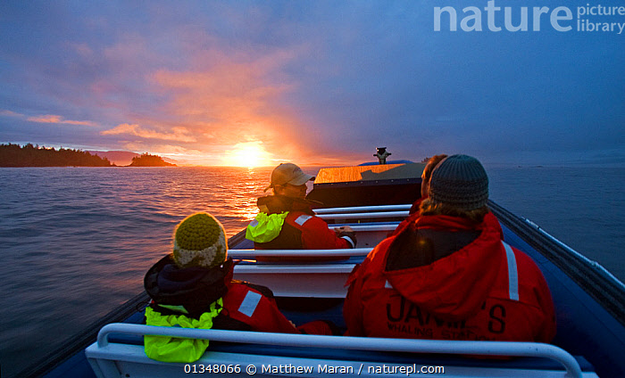 People in a small boat with the sun setting on the horizon. Pacific Rim National Park, Vancouver Island, Canada, September 2010, model released, ABOARD,boat,BOATS,British Columbia,CANADA,catalogue4,COASTS,DUSK,Evening,four people,national park,NORTH AMERICA,NP,on the move,OPEN BOATS,outdoors,Pacific Rim ,PEOPLE,raincoat,RESERVE,sea,sight seeing,SUNSET,sunsets,TOURISM,transportation,Vancouver,Vancouver Island,view to land,WATER,west canada, Matthew Maran