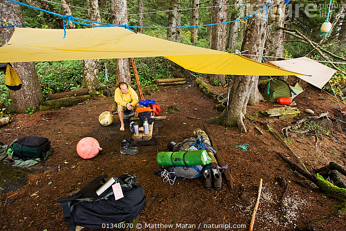 A man resting under a tarpaulin at his campsite. The West Coast Trail, Pacific Rim National Park, Vancouver Island, Canada, September., BRITISH COLUMBIA,CAMPING,CANADA,EXPEDITIONS,FORESTS,HIKING,NORTH AMERICA,NP,OUTDOORS,PEOPLE,RESERVE,TEMPERATE RAINFOREST,TOURISM,VANCOUVER,WEST CANADA,WOODLANDS,National Park, Matthew Maran