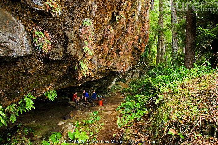 Hikers resting under an overhanging cliff on the West Coast Trail. Pacific Rim National Park, Vancouver Island, Canada, September 2010.  ,  BRITISH COLUMBIA,CANADA,CAVES,CLIFFS,FORESTS,HIKING,NORTH AMERICA,NP,OUTDOORS,PEOPLE,RESERVE,TEMPERATE RAINFOREST,TOURISM,VANCOUVER,WEST CANADA,WOODLANDS,Geology,National Park  ,  Matthew Maran
