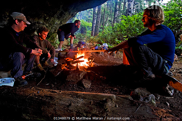 Hikers building up a fire in their cliff-overhang cave. The West Coast Trail, Pacific Rim National Park, Vancouver Island, Canada, September, Model released  ,  British Columbia,Campfire,CAMPING,CANADA,catalogue4,cave,CAVES,cliff,CLIFFS,Expeditions,Fires,FORESTS,four people,FRIENDSHIP,full length,hiker,hiking,MEN,men only,mid adult,NORTH AMERICA,NP,outdoors,overhang ,Pacific Rim ,panoramic image,PEOPLE,RESERVE,side view,SITTING,TEMPERATE RAINFOREST,Vancouver,Vancouver Island,warmth,West Coast Trail,west canada,WOODLANDS,Geology,Concepts,National Park  ,  Matthew Maran
