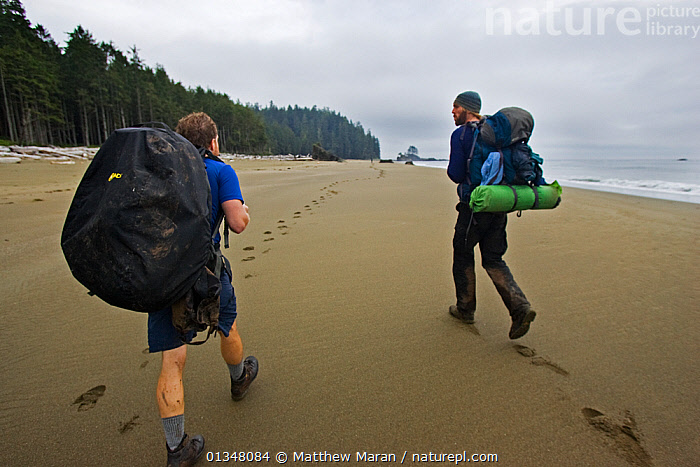 Two hikers on a beach following footprints into the distance. The West Coast Trail, Pacific Rim National Park, Vancouver Island, Canada, September 2010., BEACHES,BRITISH COLUMBIA,CANADA,HIKING,LANDSCAPES,NORTH AMERICA,NP,OUTDOORS,PEOPLE,RESERVE,TOURISM,TWO,VANCOUVER,WEST CANADA,National Park, Matthew Maran