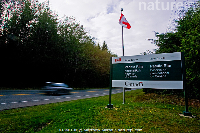 Sign by a road at the border of the Pacific Rim National Park Reserve. West coast of Vancouver Island, Canada, October., BRITISH COLUMBIA,CANADA,FLAGS,NORTH AMERICA,NP,RESERVE,ROADS,SIGNS,TOURISM,VANCOUVER,VEHICLES,WEST CANADA,National Park, Matthew Maran