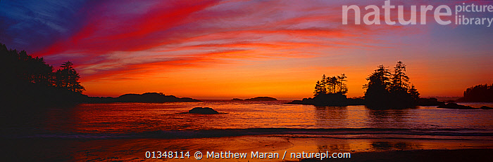 Sunset over Ucluth Beach. West coast of Vancouver Island, Canada, September 2010., ATMOSPHERIC,BEAUTY IN NATURE,BRITISH COLUMBIA,CALM,CANADA,COASTS,LANDSCAPES,NORTH AMERICA,PANORAMIC,PEACEFUL,SEASCAPES,SILHOUETTES,SKIES,SUNSET,SUNSETS,VANCOUVER,VANCOUVER BOOK,WEST CANADA, Matthew Maran