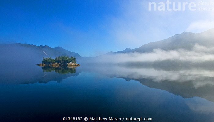 Sea mist and calm coastal waters surrounding a small island. Tofino Inlet, Clayoquot Sound, Vancouver Island, Canada, August 2008., ATMOSPHERIC,BEAUTY IN NATURE,BRITISH COLUMBIA,CALM,CANADA,ISLANDS,LANDSCAPES,MIST,MOUNTAINS,NORTH AMERICA,PEACEFUL,REFLECTIONS,SEASCAPES,VANCOUVER,VANCOUVER BOOK,WATER,WEST CANADA,WEATHER, Matthew Maran