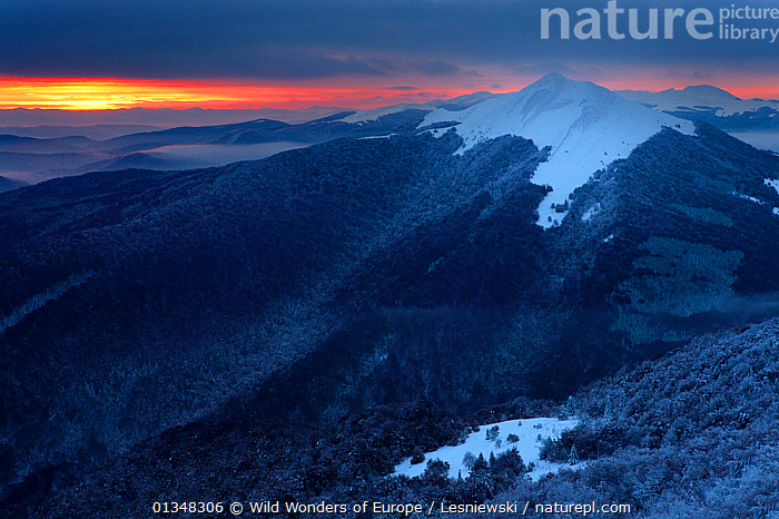 View of Polonina Carynska from Polonina Wetlinska at sunrise. Bieszczady, Carpathian Mountains, Poland, October 2009., BEAUTY IN NATURE,CARPATHIANS,COLD,DAWN,EASTERN EUROPE,EUROPE,FORESTS,GRZEGORZ LESNIEWSKI,LANDSCAPES,MOUNTAINS,NP,POLAND,RESERVE,REWILDING,SNOW,SUNRISE,WOODLANDS,WWE,National Park , Eastern-Carpathians, Wild Wonders of Europe / Lesniewski