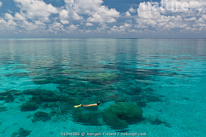 Flat calm seas of Tubbataha Reef, with a snorkeler swimming at the surface. Tubbataha National Marine Park, Philippines, April 2009., ASIA,CALM,COASTAL WATERS,CORAL TRIANGLE,CORAL REEFS,CORALS,INDO PACIFIC,PEACEFUL,PEOPLE,SNORKELING,SOUTH EAST ASIA,SWIMMING,TROPICAL,,SOUTH-EAST-ASIA, Jurgen Freund