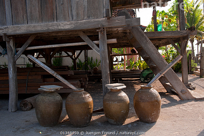 Rainwater in earthen jars surround the houses in Runduma Island, where water is scarce. These jars catch rain during the wet season. Sulawesi, Indonesia, November 2009., ASIA,BUILDINGS,CORAL TRIANGLE,CULTURES,DRINKING,HOUSES,INDO PACIFIC,SOUTH EAST ASIA,TRADITIONAL,VILLAGES,WATER,WOODEN,, Jurgen Freund