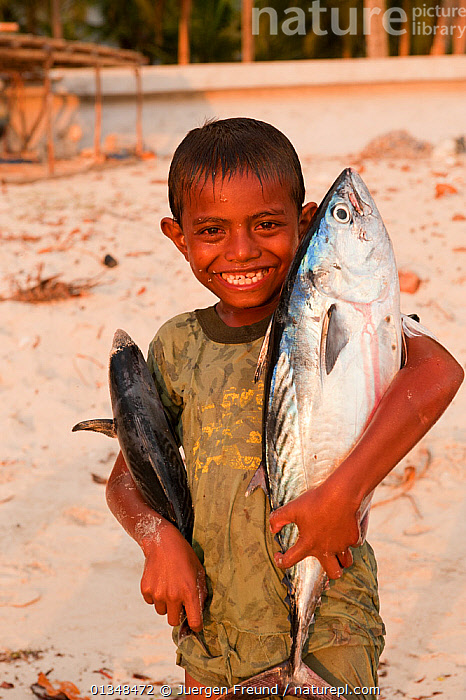 Young Indonesian boy posing with two freshly-caught fish. Kei Islands, Moluccas, Indonesia, November 2009., ASIA,BEACHES,BOYS,CHILDREN,CORAL TRIANGLE,CULTURES,FISH,INDO PACIFIC,ISLANDS,PEOPLE,PORTRAITS,SMALL,SMILING,SOUTH EAST ASIA,TROPICAL,VERTICAL,,YOUNG,SOUTH-EAST-ASIA,SIZE, Jurgen Freund