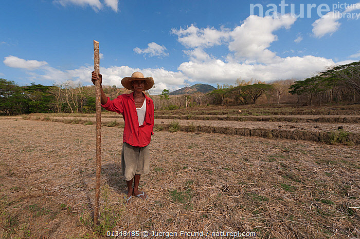 An old Filipino farmer in his dry rice field. Calintaan, Mindoro, Philippines, March 2010., AGRICULTURE,ASIA,BARREN,CORAL TRIANGLE,CULTURES,FARMING,INDO PACIFIC,MEN,OLD,PEOPLE,SOUTH EAST ASIA,,SOUTH-EAST-ASIA, Jurgen Freund