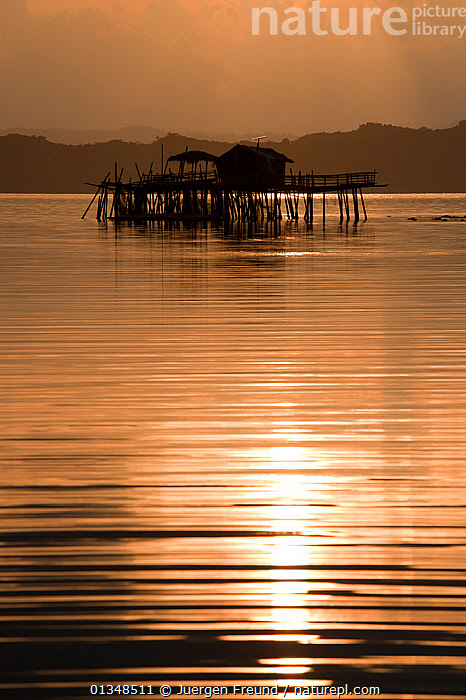 Fish farm houses on stilts in sea at sunset. Under the house are live reef fish cages serving as a grow-out farm for the live reef fish trade. Northern Palawan, Philippines, April 2009., AGRICULTURE,BUILDINGS,CORAL TRIANGLE,CULTURES,FARM,FISH FARMING,INDO PACIFIC,ISLANDS,LANDSCAPES,SILHOUETTES,SOUTH EAST ASIA,SUNSET,TRADITIONAL,VERTICAL,,SOUTH-EAST-ASIA,Asia, Jurgen Freund