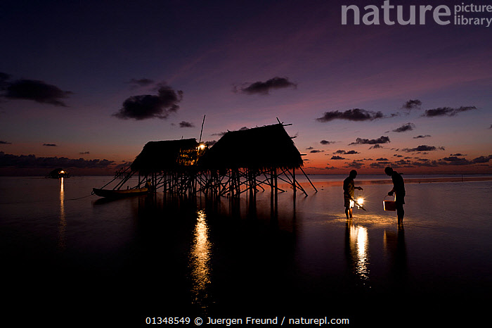 Farmers gleaning the shallows for seafood in front of houses they live in during the twice-yearly coconut harvest. Moromaho Island, Wakitobi, Sulawesi, Indonesia, November 2009., ASIA,BUILDINGS,COLLECTING,CORAL TRIANGLE,CULTURES,DUSK,FOOD,GATHERING,HARVESTING,HOUSES,INDO PACIFIC,LANDSCAPES,MEN,PEOPLE,REFLECTIONS,SHALLOWS,SILHOUETTES,SOUTH EAST ASIA,STILTS,SUNSET,TRADITIONAL,TROPICAL,WATER,,SOUTH-EAST-ASIA,INDONESIA, Jurgen Freund