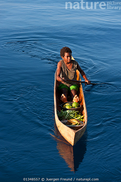 Papua New Guinean islander paddling his dugout canoe to trade fresh vegetables. He will come back with instant noodles, rice, soap and other groceries he would normally have no access to. Papua New Guinea, June 2010., ASIA,BOATS,CANOES,CORAL TRIANGLE,CULTURES,DUGOUT,DUGOUTS,FRONT VIEWS,INDO PACIFIC,MEN,OARS,PEOPLE,SOUTH EAST ASIA,TRADING,TRADITIONAL,TROPICAL,VERTICAL,WOODEN,,OPEN-BOATS,BOAT-PARTS, Jurgen Freund