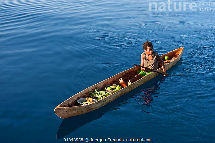 Papua New Guinean islander paddling his dugout canoe to trade fresh vegetables. He will come back with instant noodles, rice, soap and other groceries he would normally have no access to. Papua New Guinea, June 2010., ASIA,BOATS,CANOES,CORAL TRIANGLE,CULTURES,DUGOUT,DUGOUTS,INDO PACIFIC,MEN,OARS,PEOPLE,SOUTH EAST ASIA,TRADING,TRADITIONAL,TROPICAL,WOODEN,,OPEN-BOATS,BOAT-PARTS, Jurgen Freund