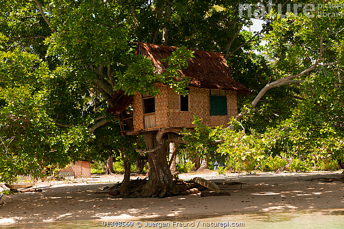Treehouse on Enuk Island. Kavieng, Papua New Guinea, June 2010., ASIA,BEACHES,BUILDINGS,CORAL TRIANGLE,CULTURES,INDO PACIFIC,ISLANDS,SOUTH EAST ASIA,TRADITIONAL,TREEHOUSES,TREES,WOVEN,,PLANTS, Jurgen Freund