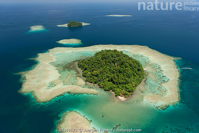 Aerial view of Schumann Island in Kimbe Bay. West New Britain, Papua New Guinea, October 2008.  ,  AERIALS,ASIA,BEACHES,CORAL TRIANGLE,INDO PACIFIC,ISLANDS,LANDSCAPES,OCEANS,SOUTH EAST ASIA,TREES,TROPICAL,,PLANTS  ,  Jurgen Freund