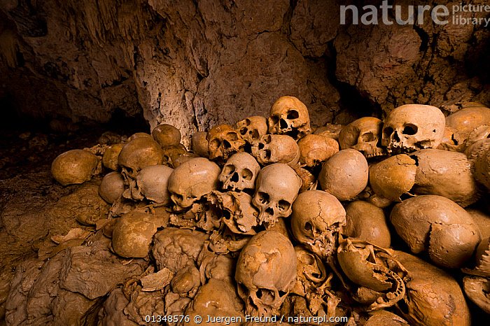 Skull cave in Milne Bay. These skulls are said to be heads of decapitated enemies of the people living here in the olden days. Papua New Guinea, October 2008., ASIA,BONES,CAVES,CORAL TRIANGLE,GROUPS,INDO PACIFIC,SKULLS,SOUTH EAST ASIA,, Jurgen Freund