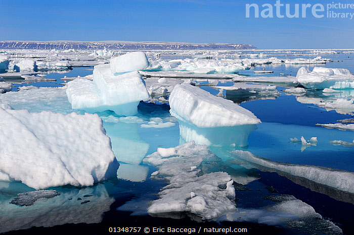 Melting ice at Floe Edge, Arctic Bay, Baffin Island, Nunavut, Canada, June 2011., ARCTIC,CANADA,ICE,ICEBERGS,ICESCAPES,LANDSCAPES,NORTH AMERICA,POLAR,SEASCAPES,WATER, Eric Baccega