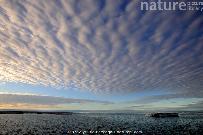 Clouds in a ripple pattern over melting icepack. Foxe Basin, Nunavut, Canada, July 2011.  ,  ARCTIC,CANADA,CLOUDS,ICE,ICESCAPES,LANDSCAPES,NORTH AMERICA,PATTERNS,POLAR,SEASCAPES,SKIES,WATER,WEATHER  ,  Eric Baccega