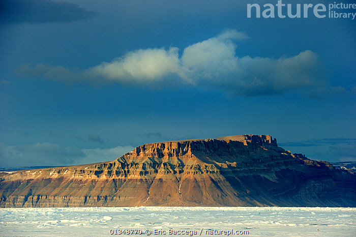 Midnight sun light over icepack and cliffs in spring. Arctic Bay, Baffin Island, Nunavut, Canada, June.  ,  ARCTIC,CANADA,CLIFFS,COASTS,GEOLOGY,ICE,ICESCAPES,LANDSCAPES,MOUNTAINS,NORTH AMERICA,POLAR,SEASCAPES  ,  Eric Baccega