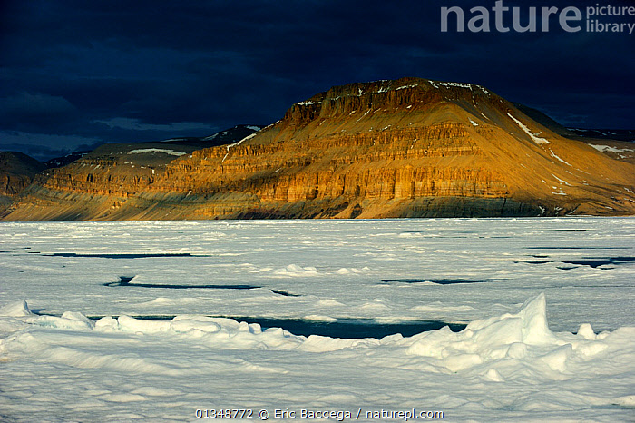 Midnight sun light over icepack and cliffs in spring. Arctic Bay, Baffin Island, Nunavut, Canada, June., ARCTIC,CANADA,COASTS,ICE,ICESCAPES,LANDSCAPES,MOUNTAINS,NORTH AMERICA,POLAR,SEASCAPES,WATER, Eric Baccega