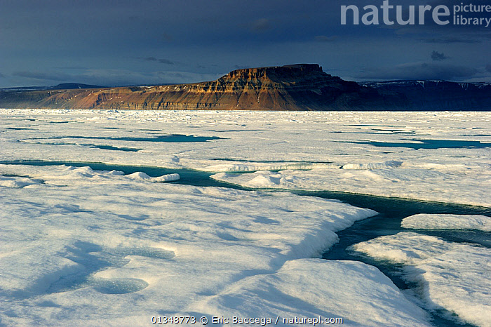 Midnight sun light over icepack and cliffs in spring. Arctic Bay, Baffin Island, Nunavut, Canada, June., ARCTIC,CANADA,COASTS,GLOBAL WARMING,ICE,ICESCAPES,LANDSCAPES,MOUNTAINS,NORTH AMERICA,POLAR,SEASCAPES,WATER, Eric Baccega