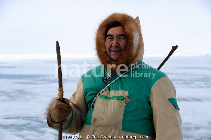 Portrait of Inuit hunter on icepack. Floe Edge, Arctic bay, Baffin Island, Nunavut, Canada, June 2011. Model released., ARCTIC,Arctic bay,Baffin Island,CANADA,catalogue4,Floe edge,FUR,half length,holding,hood,hunter,Hunters,ICE,Icepack,inuit,local industry,local people,MAN,mature adult,NORTH AMERICA,Nunavut,one man only,one person,outdoors,PEOPLE,portrait,PORTRAITS,SMILING,spear,stading,TRADITIONAL,TRIBES, Eric Baccega