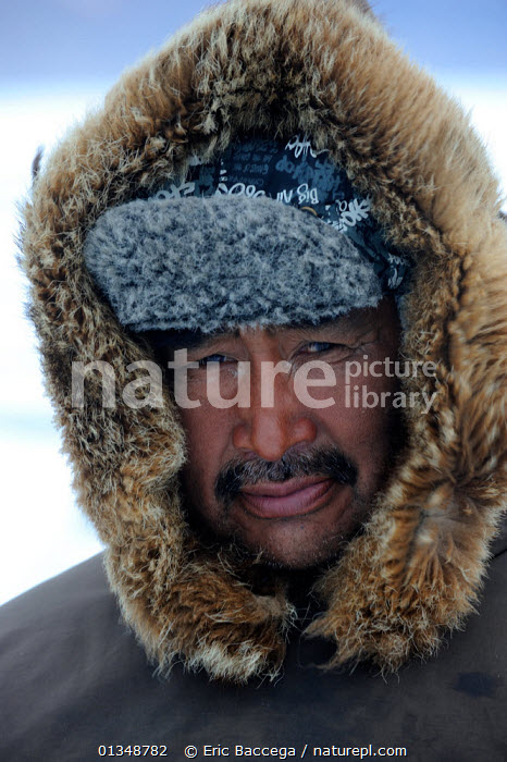 Portrait of Inuit hunter with a fur hat. Floe Edge, Arctic bay, Baffin Island, Nunavut, Canada, June 2011., ARCTIC,CANADA,FACES,full frame,HEADS,Hunters,NORTH AMERICA,outdoors,PEOPLE,TRADITIONAL,TRIBES,VERTICAL, Eric Baccega