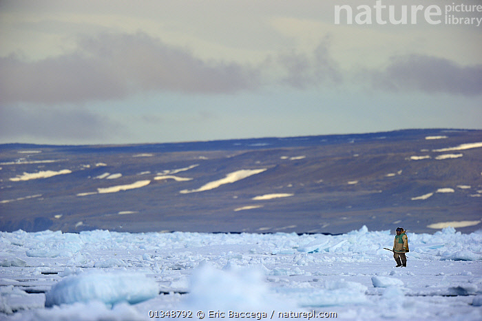 Inuit hunter on icepack. Floe Edge, Arctic Bay, Baffin Island, Nunavut, Canada, June., ARCTIC,CANADA,HUNTERS,HUNTING,ICE,LANDSCAPES,NORTH AMERICA,ONE,OUTDOORS,PEOPLE,TRADITIONAL,TRIBES, Eric Baccega