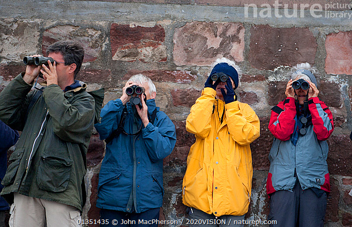 Four visitors on Chanonry Point watching Bottlenose dolphin (Tursiops truncatus) through binoculars  Moray Firth, Inverness-shire, Scotland, UK, May  ,  2020VISION,ATLANTIC,BINOCULARS,BOTTLENOSE,CETACEANS,COASTAL WATERS,DELPHINIDAE,DOLPHIN,DOLPHINS,ECOTOURISM,ECO TOURISM,EUROPE,FOUR,HUMOROUS,INVERNESS SHIRE,MAMMALS,MARINE,MORAY,MORAY FIRTH,OUTDOORS,PEOPLE,SCOTLAND,SEAS,TEMPERATE,TOURISM,UK,VERTEBRATES,WATCHING,Concepts,United Kingdom  ,  John MacPherson / 2020VISION