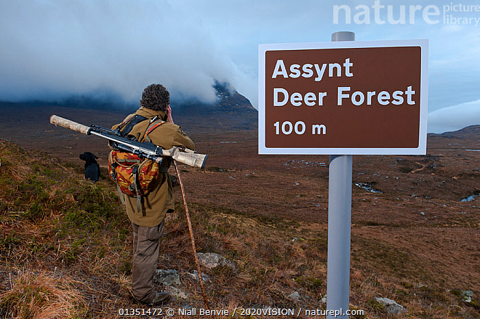 Don o�Driscoll, of the John Muir Trust, with spoof Deer Forest sign, Quinag, Sutherland, Highland, Scotland, UK, January 2011  ,  2020VISION,ASSYNT,DEER,EMPTY,EUROPE,GUN,HUMOROUS,IFTE NB 014040,LANDSCAPES,MALE,MAN,MOORLANDS,MOUNTAINS,NBE_03_220111_0020,OUTDOORS,PEOPLE,RANGER,REWILDING,RIFLE,SCOTLAND,SIGNS,UK,UPLANDS,Concepts,United Kingdom  ,  Niall Benvie / 2020VISION