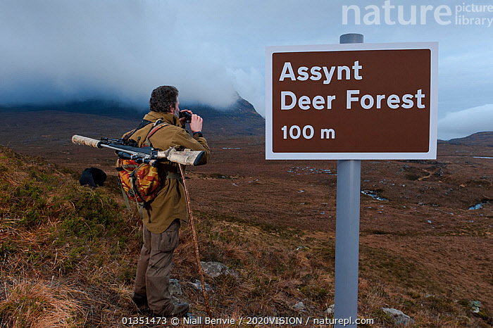 Don o�Driscoll, JMT, with spoof Deer Forest sign, Quinag, Sutherland, Highland, Scotland, UK, January 2011  ,  OUTDOORS, UK,2020VISION,ASSYNT,DEER,EMPTY,EUROPE,GUN,HUMOROUS,IFTE NB 014051,MALE,MAN,MOORLANDS,MOUNTAINS,NBE_03_220111_0025,PEOPLE,RANGER,REWILDING,RIFLE,SCOTLAND,SIGNS,UK,UPLANDS,Concepts,United Kingdom  ,  Niall Benvie / 2020VISION