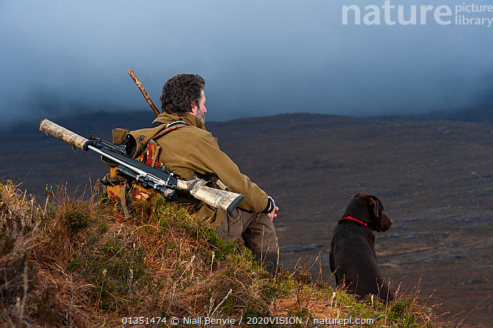 Don o�Driscoll, JMT, looking out over the moorland, with dog, Quinag, Sutherland, Highland, Scotland, UK, January 2011. 2020VISION Exhibition. 2020VISION Book Plate.  ,  2020VISION,2020vision book plate,2020vision exhibition,Assynt,DEER,DOGS,EMPTY,EUROPE,exhibition,gun,guns,HUMOROUS,IFTE NB 014057,male,MAN,moorlands,MOUNTAINS,NBE_03_220111_0028,outdoors,PEOPLE,PETS,ranger,Rewilding,rifle,SCOTLAND,SIGNS,UK,UPLANDS,Concepts,United Kingdom,2020cc  ,  Niall Benvie / 2020VISION