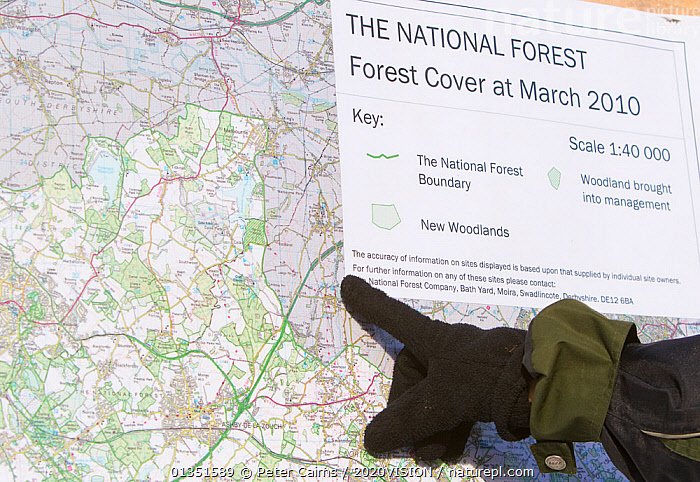 Boy pointing to map of The National Forest, Moira, Derbyshire, UK, November 2010  ,  2020VISION,CONSERVATION,ENGLAND,EUROPE,FORESTS,gloves,information,Map,maps,Midlands,outdoors,pca_1_210411_42,PEOPLE,SIGNS,snow frost,The National Forest,UK,WINTER,WOODLANDS,United Kingdom  ,  Peter Cairns / 2020VISION