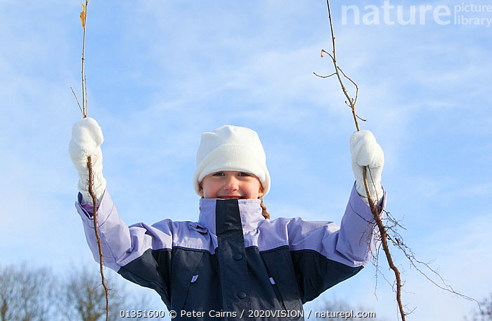 Child holding up two saplings, a volunteer planting sapling trees as part of The National Forest's planting day, Moira, Derbyshire, UK, November 2010  ,  2020VISION,child,CHILDREN,COLD,CONSERVATION,ENGLAND,EUROPE,FORESTS,girl,HUMOROUS,Midlands,outdoors,pca_1_210411_95,PEOPLE,planting,snow frost,The National Forest,TREES,UK,WINTER,WOODLANDS,Concepts,PLANTS,United Kingdom  ,  Peter Cairns / 2020VISION